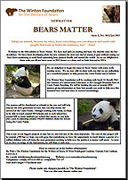 Bears Matter #5 - Dec 2012-Jan 2013
